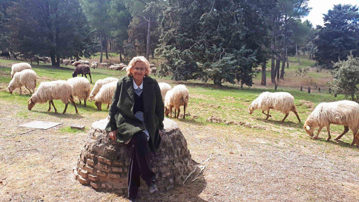 Manuela Carmena visita el rebaño que pasta en la Casa de Campo.