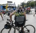 Colectivos ciclistas y ecologistas llenan Madrid de bicicletas