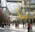 Flores gigantes para engalanar el Palacio de Cristal