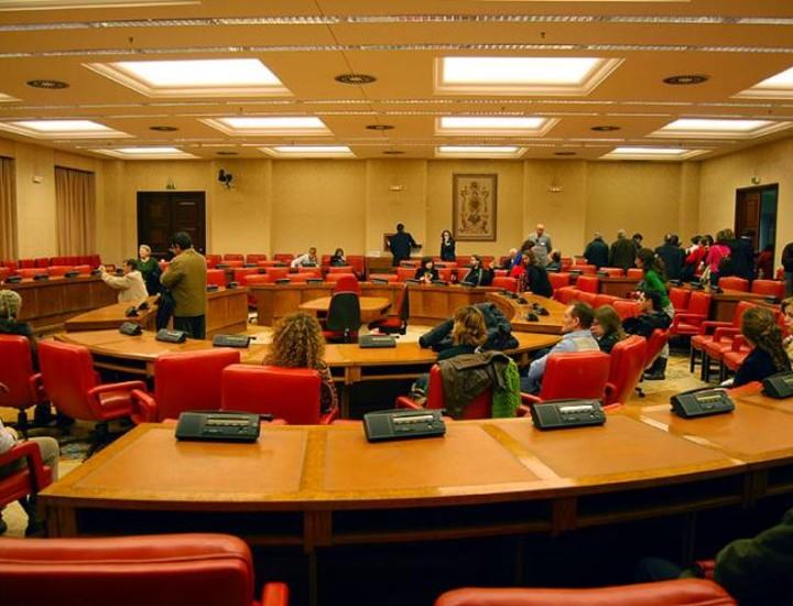 Más de 5.000 personas visitaron este domingo el Congreso de los Diputados, en el primer día de jornadas abiertas en conmemoración de los 30 años de aprobación de la Constitución Española de 1978.