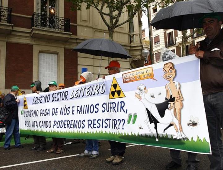Miles de ganaderos exigen en Madrid al Gobierno soluciones a la crisis del sector lácteo.
