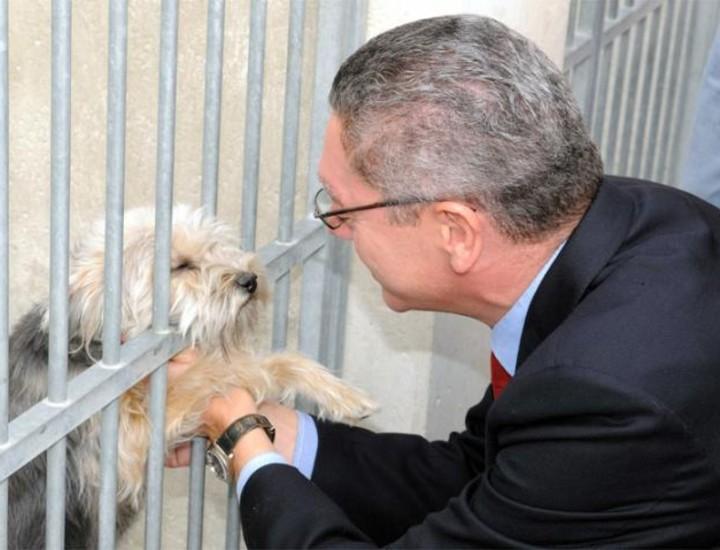 El alcalde de Madrid, Alberto Ruiz-Gallardón, visitó este miércoles el centro de protección animal del Ayuntamiento.
