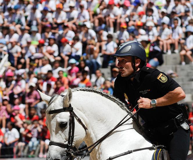 La Policía Nacional ha celebrado este miércoles en la plaza de toros de Las Ventas una exhibición de sus diferentes unidades a la que han acudido más de 15.000 alumnos de 118 centros educativos. Es una iniciativa incluida en el plan Director para la Mejora de la Convivencia y Seguridad Escolar.