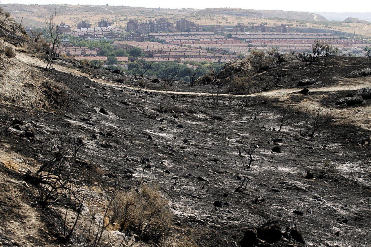 Incendio forestal en el parque regional del sureste en el municipio de Rivas-Vaciamadrid.