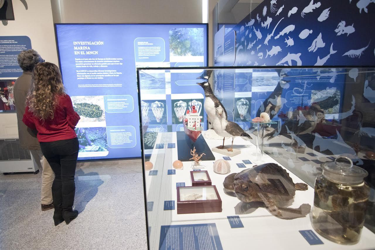 La exposición puede visitarse hasta el mes de noviembre.