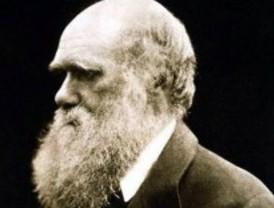 Un referente obligado de la investigación sobre la evolución