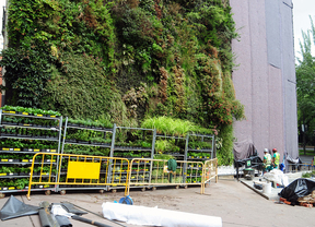 Cambian el fieltro de parte del jardín vertical del CaixaForum
