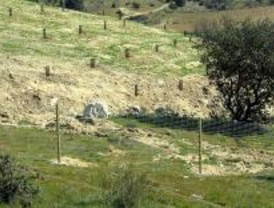 ANAPRI organiza sendas ecológicas por Colmenar Viejo para conoces sus aves