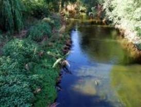 Ecologistas denuncia que la huerta se riega con agua residual