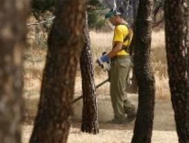La Comunidad desbroza más de 4.600 kilómetros de márgenes en las carreteras para prevenir incendios