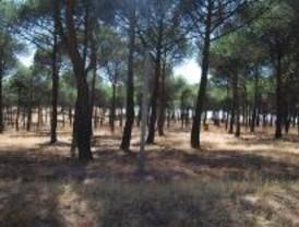 Bosques Naturales, sancionada con 9.500 euros por irregularidades en su publicidad