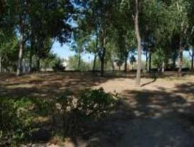 Un solar abandonado de Villaverde, nueva zona de 'ecuavoley'
