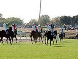 Cada domingo se juegan 300.000 euros de media en el hipódromo