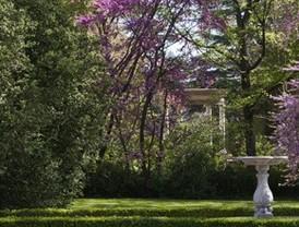 Primavera en El Capricho