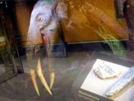 Mastodontes en el Metro