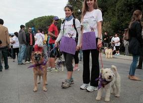 Perroton 2014, dos corredoras con sus perros muestran carteles en apoyo a Excálibur, perro sacrificado por ébola.