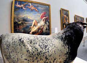 El Museo del Prado presenta 'Historias naturales'