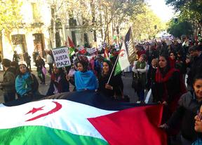 La conferencia europea en apoyo al pueblo saharaui culmina con una manifestación en Madrid