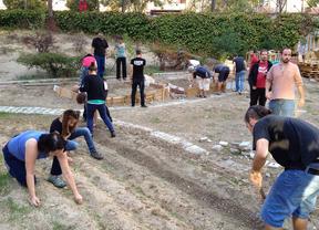 Madrid destinará más de 20 parcelas a huertos comunitarios