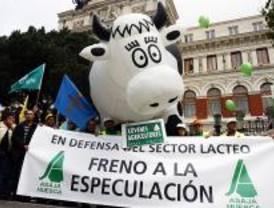 Miles de ganaderos protestan por la crisis del sector lácteo