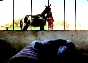 Vuelve a Madrid la Muestra de Cine Palestino