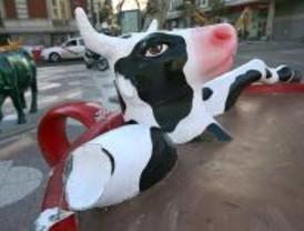 ¿Qué vaca adoptarías?