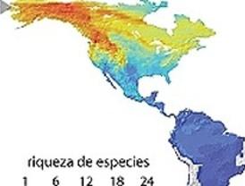 El impacto de las migraciones del Cenozoico