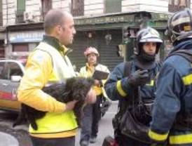 Un hombre resulta herido y su piso arrasado en un incendio en el distrito Centro