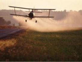 Los pesticidas siguen limitando la recuperación de la biodiversidad