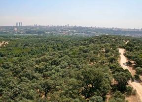 La privatización de la jardinería se extiende a los parques históricos