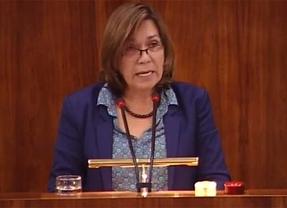 Julián Sánchez Vizcaíno y Lali Vaquero también se presentan a las primarias de IU