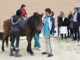 Terapia equina para alumnos con discapacidad