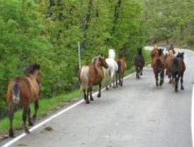 El PORN del Guadarrama da vía libre a un urbanismo limitado en el Valle del Lozoya