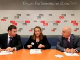 Los ayuntamientos del PSOE financiarán la Asociación 11-M