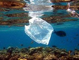 Los Verdes proponen penalizar la fabricación de bolsas de plástico