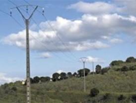 Iberdrola elimina un punto negro del monte de Batres en el que se electrocutaban aves rapaces