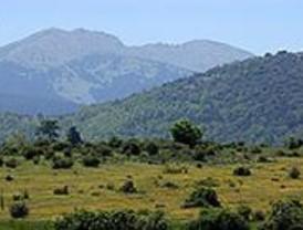 Ecologistas y vecinos se concentrarán en defensa de los bosques madrileños