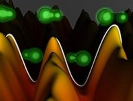 Una mirada al interior de las moléculas