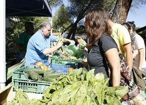Las mejores verduras madrileñas de temporada protagonizan el Día de Mercado