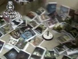 La Policía detiene a 11 acusados de falsificar más de 24.000 CD