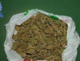 La policía ha incautado trece kilos de marihuana en una tienda de Alcorcón