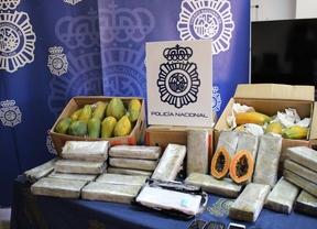 Incautan 32 kilos de cocaína ocultos en un cargamento de papayas