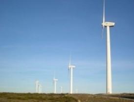 Efectos nocivos de los parques eólicos