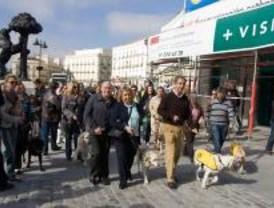 Los invidentes reivindican a los 'perros-guía'