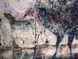 Nuevos hongos y bacterias en la cueva de Lascaux