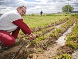 La superficie dedicada a agricultura ecológica en la región aumenta un 10,3% en un año