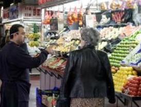 La biotecnología como fuente de innovación en el sector alimentario