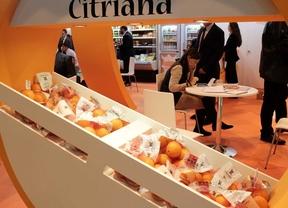Feria Fruit Attraction 2013