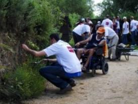 Voluntarios y adultos con discapacidad de Pozuelo crean un jardín vertical
