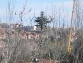 Desalojan una guardería por el riesgo de caída de una antena de telefonía disfrazada de abeto